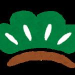 松は『◯◯◯』を待つの 『まつ』⁉︎ 意外に知られていないおめでたさ最大級を表す「松」の意味!